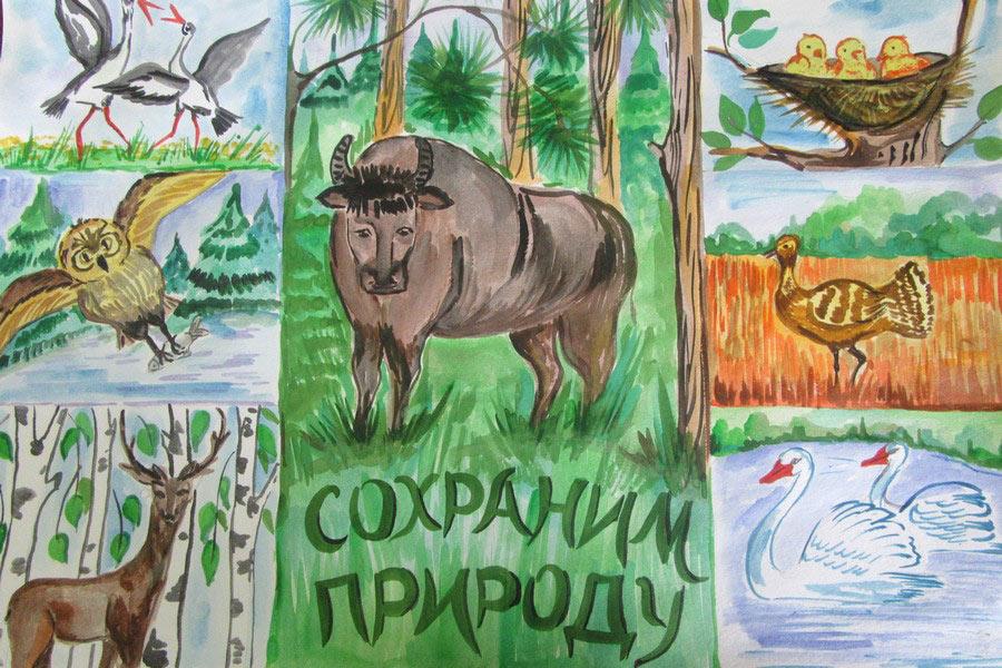 фотография плаката берегите животных польза сошлись одном